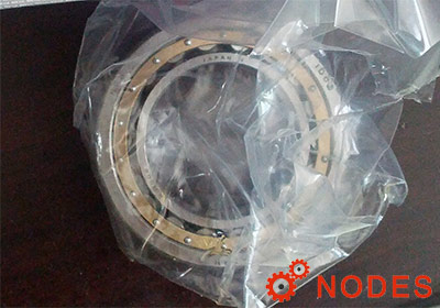 NSK NU1096 Cylindrical roller bearings
