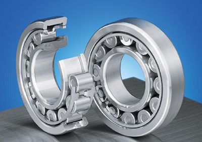 EW series NSK cylindrical roller bearings