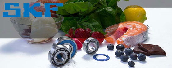 where to buy SKF bearings